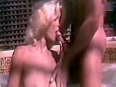 Seka's Teenage Diary - classic porn movie - 1984