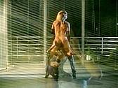 Barlow Affair - classic porn - 1991