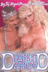 Double D Harem - classic porn - 1988