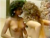 Strange Bedfellows - classic porn film - year - 1985
