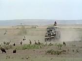 Black Emanuelle - classic porn film - year - 1975