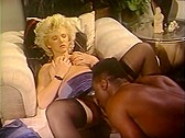 Vintage sean michaels porn