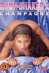 Rump Shaker 2 - classic porn - 1993