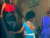 Zebra Club - classic porn film - year - 1986