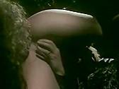 Bad Girls 5: Maximum Babes - classic porn film - year - 1995