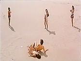 Hakujitsumu 2 - classic porn - 1987