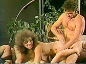 Vintage porn DVD