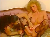 Bed Stories - classic porn film - year - 1990