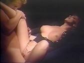 Wild Wild Chest 2 - classic porn film - year - 1995