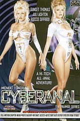 Cyberanal - classic porn - 1995
