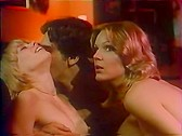 Confessions of a Young American Housewife - classic porn movie - 1974