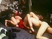 Terri hall porn star