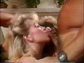 Tunnel of Love - classic porn film - year - 1986