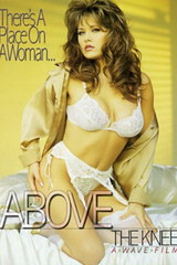 Above The Knee - classic porn movie - 1995