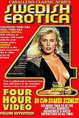 Swedish Erotica 17 - classic porn movie - 1981