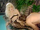 Swedish Erotica Vol.126 - classic porn movie - 1995