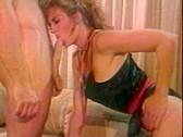 Swedish Erotica 113 - classic porn film - year - 1995