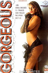 Gorgeous - classic porn film - year - 1990