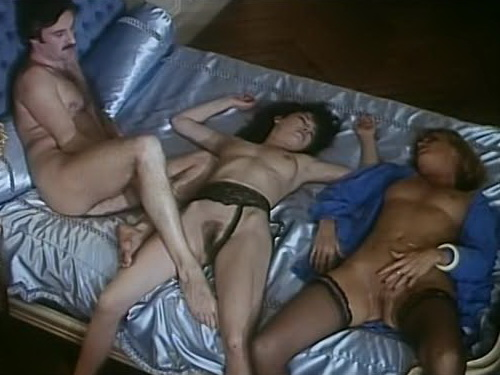 The Party - classic porn film - year - 1979
