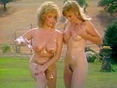 Swedish Erotica Vol.111 - classic porn movie - 1995