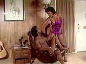 Swedish Erotica Vol. 101 - classic porn movie - 1995