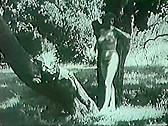 Big Bust Loops 2 - classic porn movie - n/a