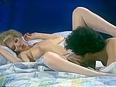 Golden Age Of Porn: Shauna Grant - classic porn - n/a