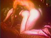 Vintage erotica forums samantha fox
