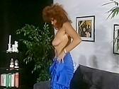 Hengst Des Monats - classic porn film - year - 1992