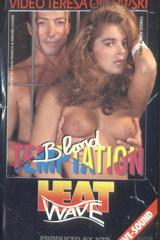 Blond Temptation - classic porn - 1991