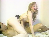Bitches In Heat Volume 11 - classic porn movie - 1988