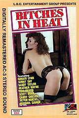 Bitches In Heat Volume 11 - classic porn film - year - 1988