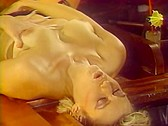 Bitches In Heat Volume 13 - classic porn movie - 1988