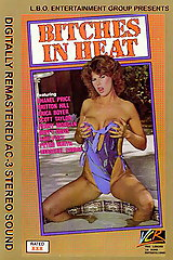 Bitches In Heat Volume 13 - classic porn - 1988