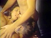 Bitches In Heat Volume 9 - classic porn - 1988