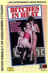 Bitches In Heat Volume 5 - classic porn movie - 1988