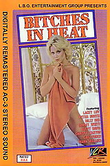 Bitches In Heat Volume 16 - classic porn movie - 1988