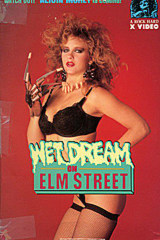 Wet Dream on Elm Street - classic porn movie - 1988