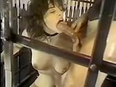 Clasic porn