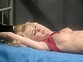 Stewardesses Behind Bars - classic porn movie - 1994