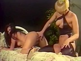 Inner Pink 4 - classic porn movie - 1995