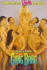 Gang Bang Bitches 7: Rachel Love A Go-go Gangbang - classic porn movie - 1995